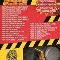 PERITO FONETICA ACUSTICA FONOLOGIA AUDIOLOGIA MEXICO.jpg